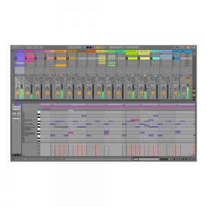 Ableton Live 10 Suite UPG from Live Lite